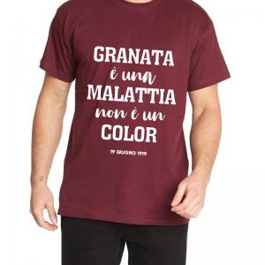 t-shirt centenario salernitana granata è ua malattia non è un color uomo granata